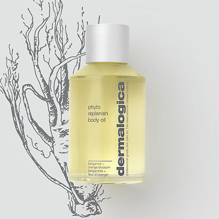 Image of the Phyto Replenish Body Oil and a drawing of ginseng